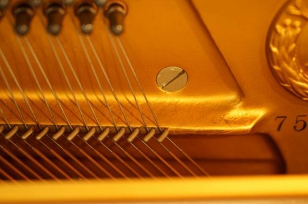 day dan piano yamaha u3s