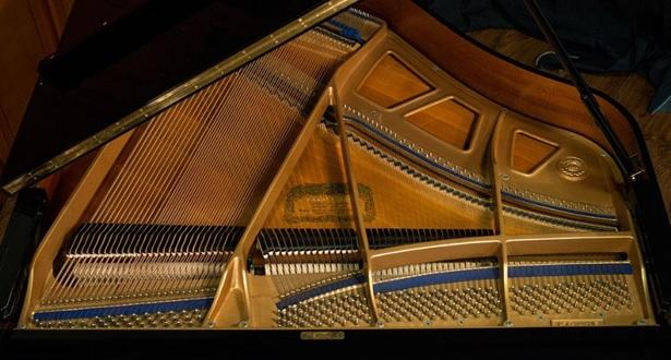 bo may co dan grand piano kawai kg-1e