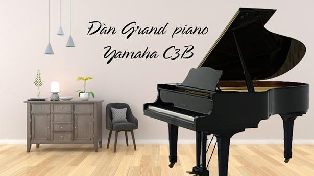 dan grand piano yamaha c3b cu
