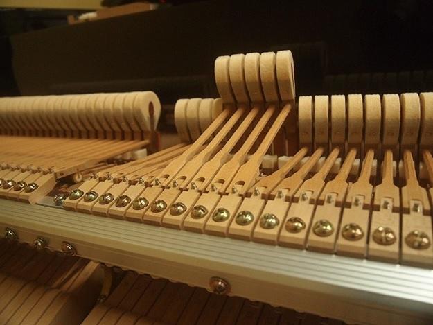 bua dan piano yamaha c7b