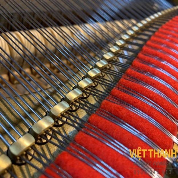 chot giu day dan grand piano yamaha c7b