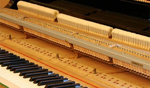 bo co dan grand piano yamaha g5b