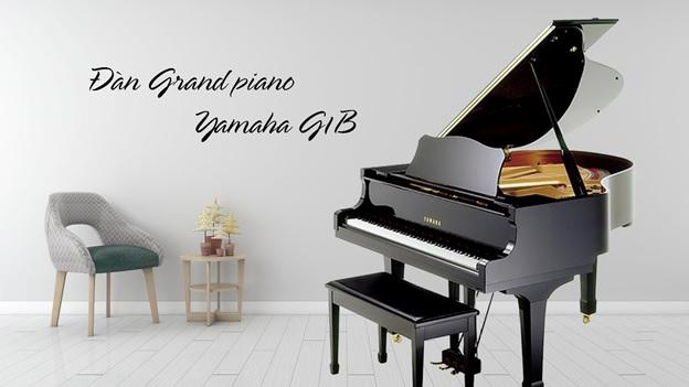 grand piano yamaha g1b cu