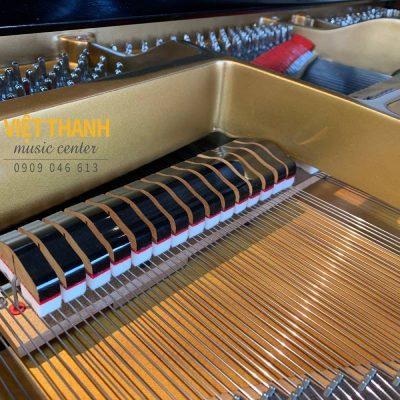 may-dan-grand-piano-Yamaha-G3B