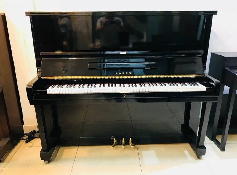 Đàn Piano Rosen 300