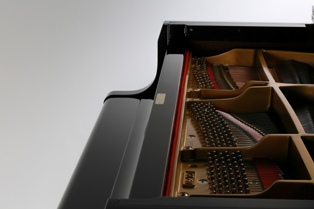 cau truc solid cua dan piano kawai gl 10