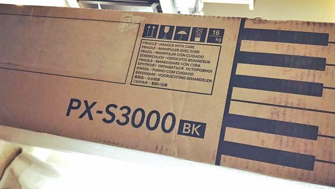 dan casio px s3000
