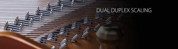 Dual Duplex Scaling