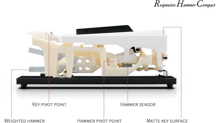 Công nghệ Âm thanh Harmonic Imaging