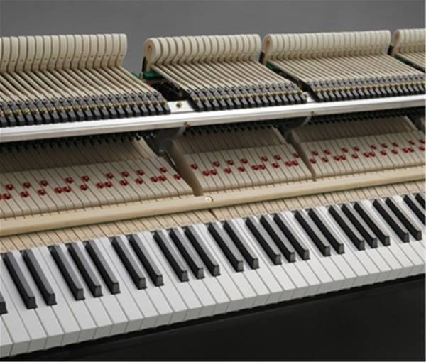 phim dan piano kawai gl 20