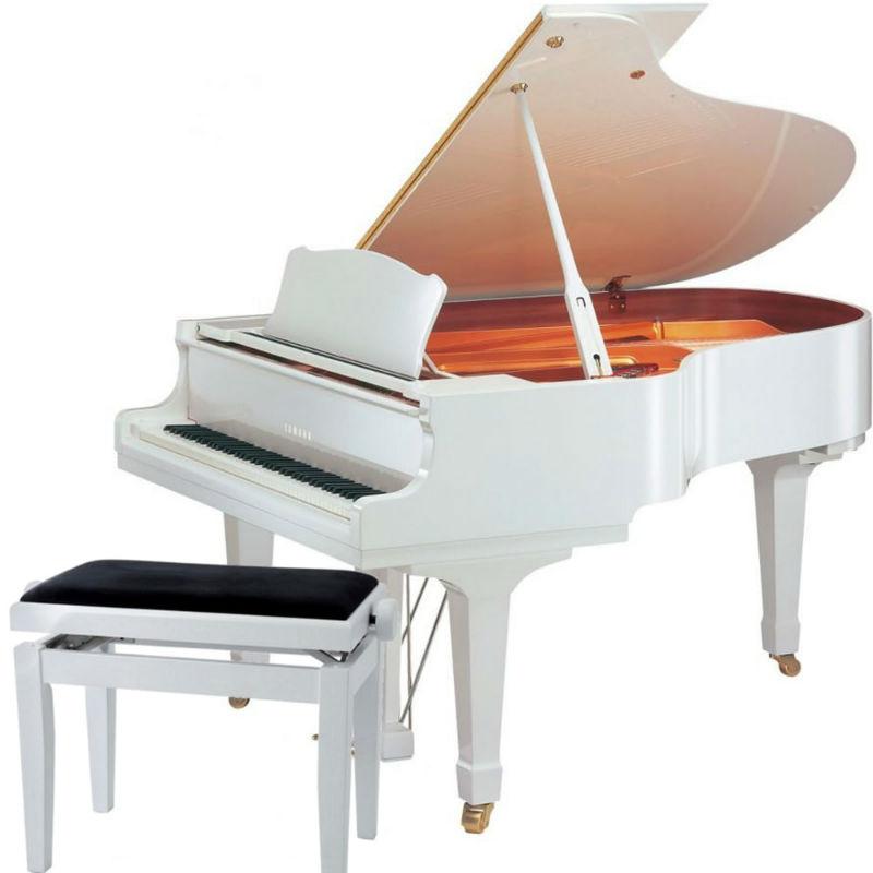 grand piano yamaha gc1 mau trang