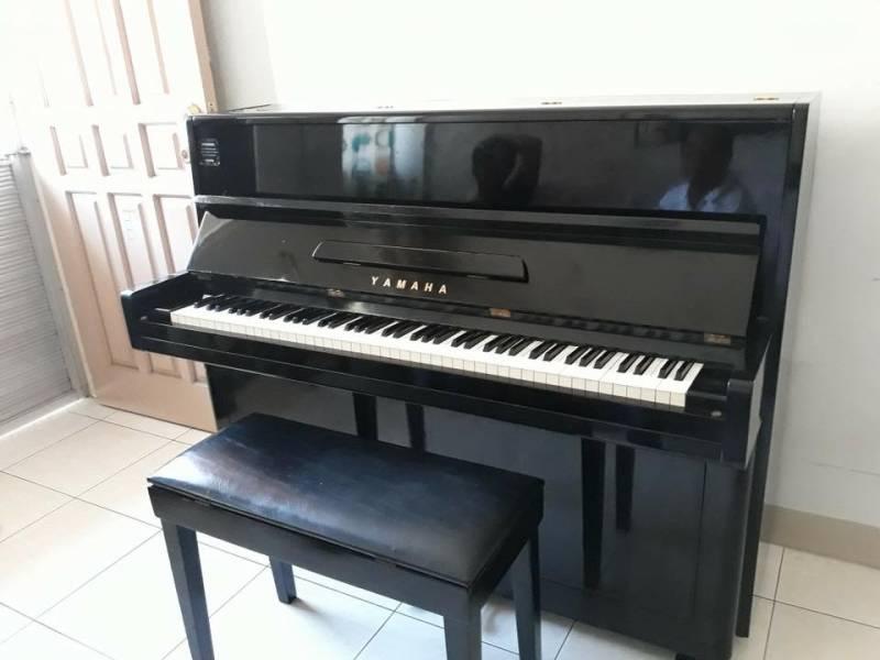 dan piano yamaha p1
