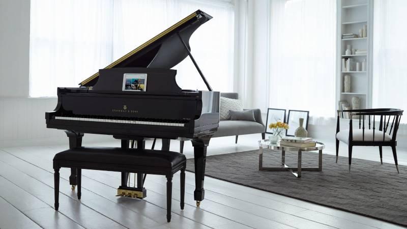 gia_tri_dan_piano_stienway_5