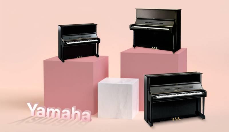 top-3-dia-diem-ban-dan-piano-cu-nhieu-nhat-tai-viet-nam-2