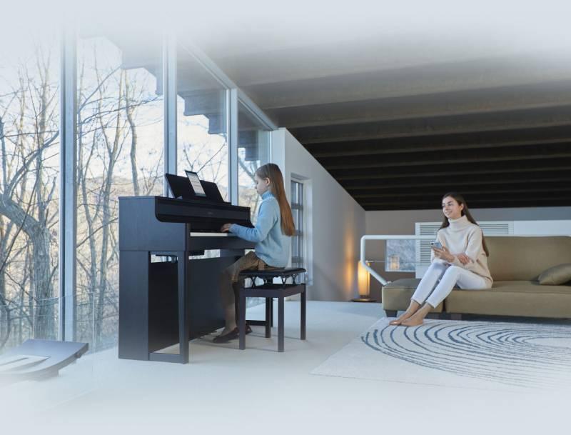 dan piano roland hp-700 series