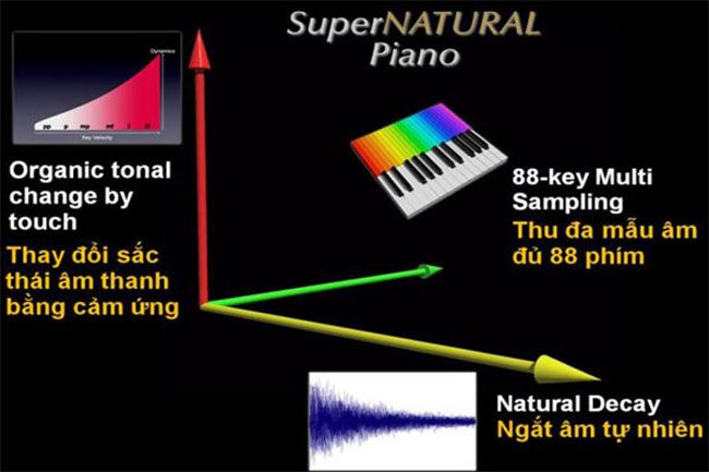 cong nghe supernatural