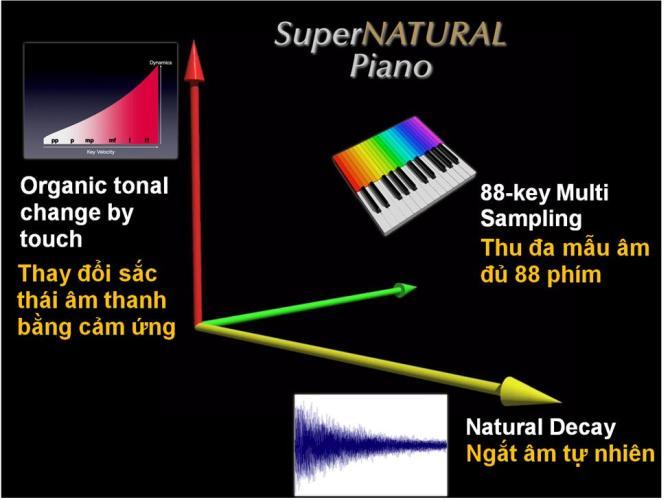 Công Nghệ âm thanh Supernatural - nhaccuvietthanh.com