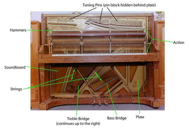 Cấu tạo đàn piano cơ
