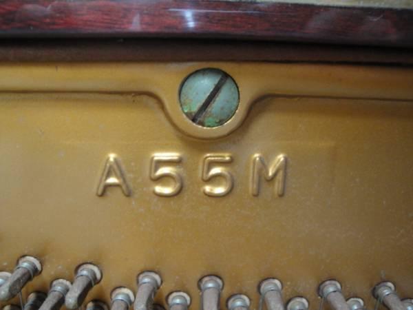 dan Atlas A55M