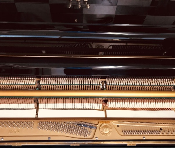 bo may co piano yamaha u1d