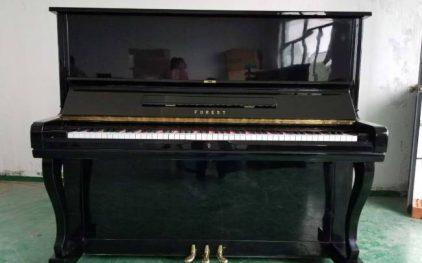 Cửa hàng bán đàn piano Forest giá tốt nhất thị trường