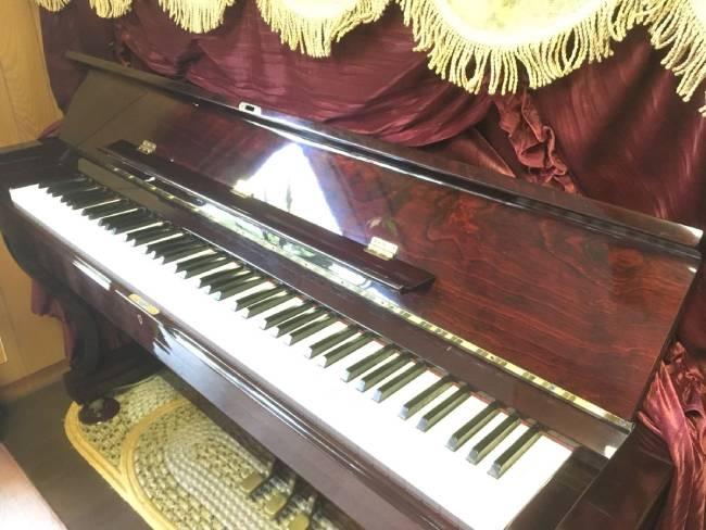 dan piano Flora