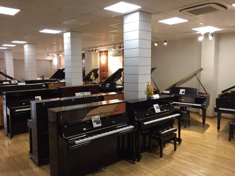 dan-piano-cu-viet-thanh