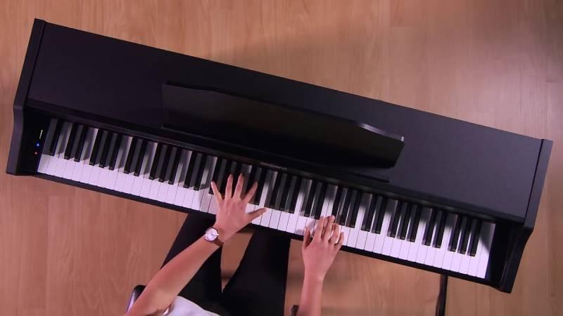 dan piano roland rp 102