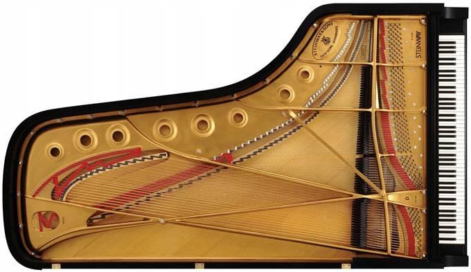 Đàn Piano Đại dương cầm hòa nhạc